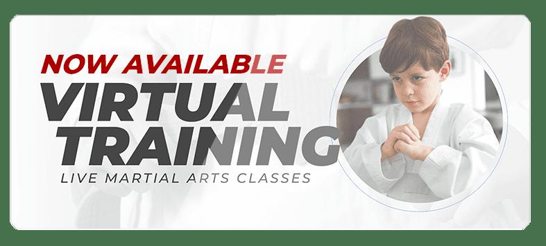 VIRTUALPOPUPSPARK.1.1, Wilcox Karate Academy in Independence, MO
