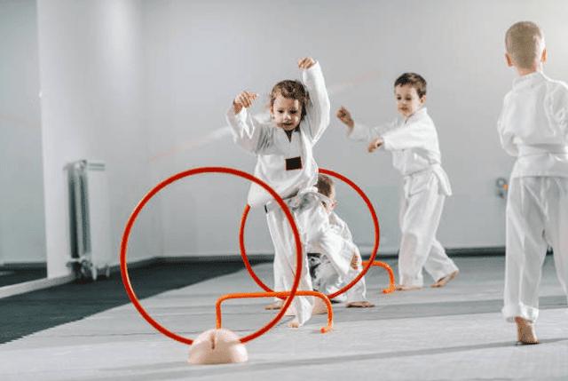 Kidsbirthday, Wilcox Karate Academy in Independence, MO