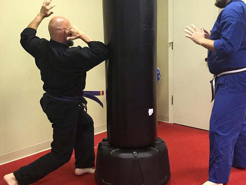 adult martial arts training in independance